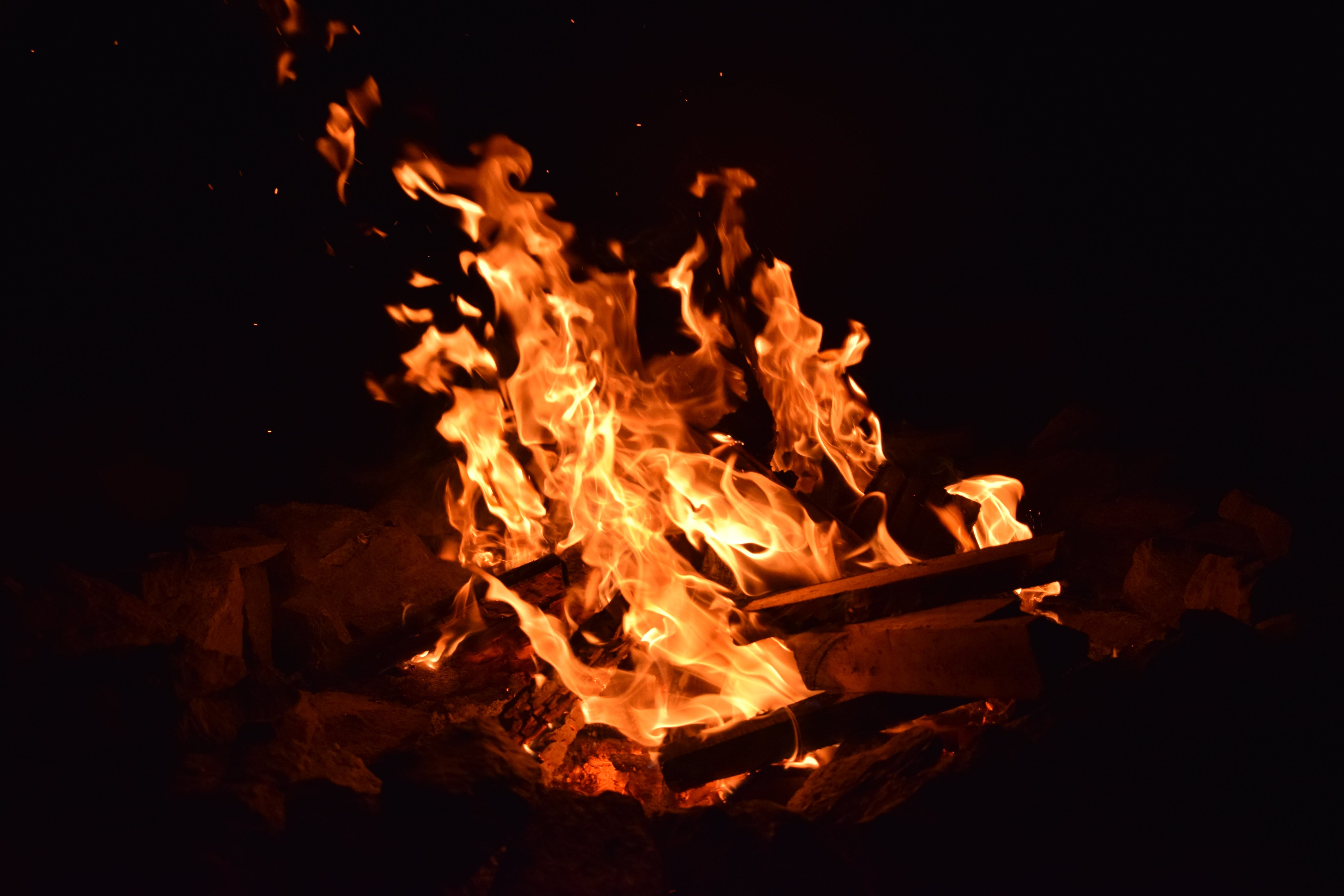 Free stock photo of dark, blur, firewood, fire