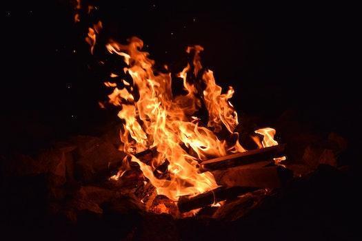 Free stock photo of dark, blur, firewood, fire