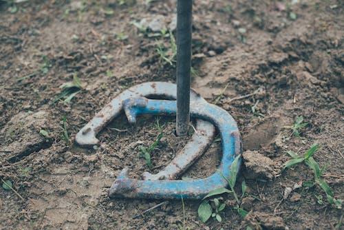 休閒, 土, 土壤, 地面 的 免費圖庫相片