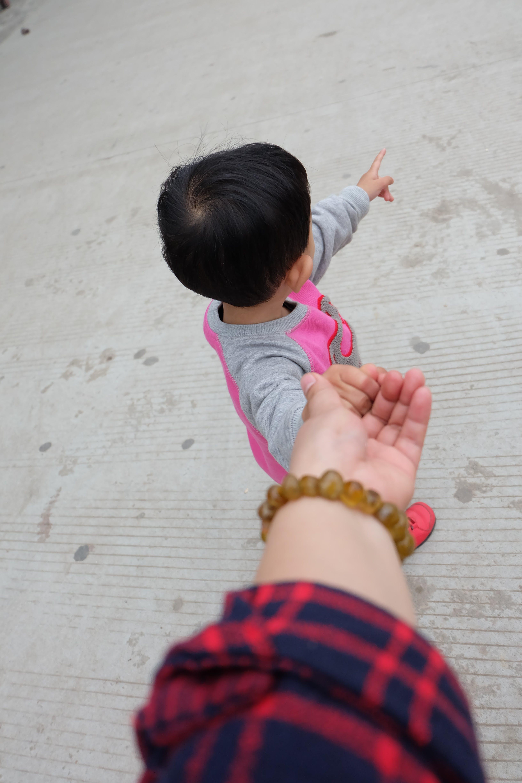 Free stock photo of hand, cute, kids, warm
