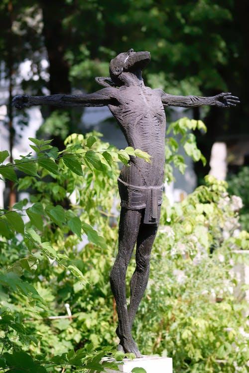 Gratis stockfoto met bebaarde, beeld, begraafplaats, bladeren