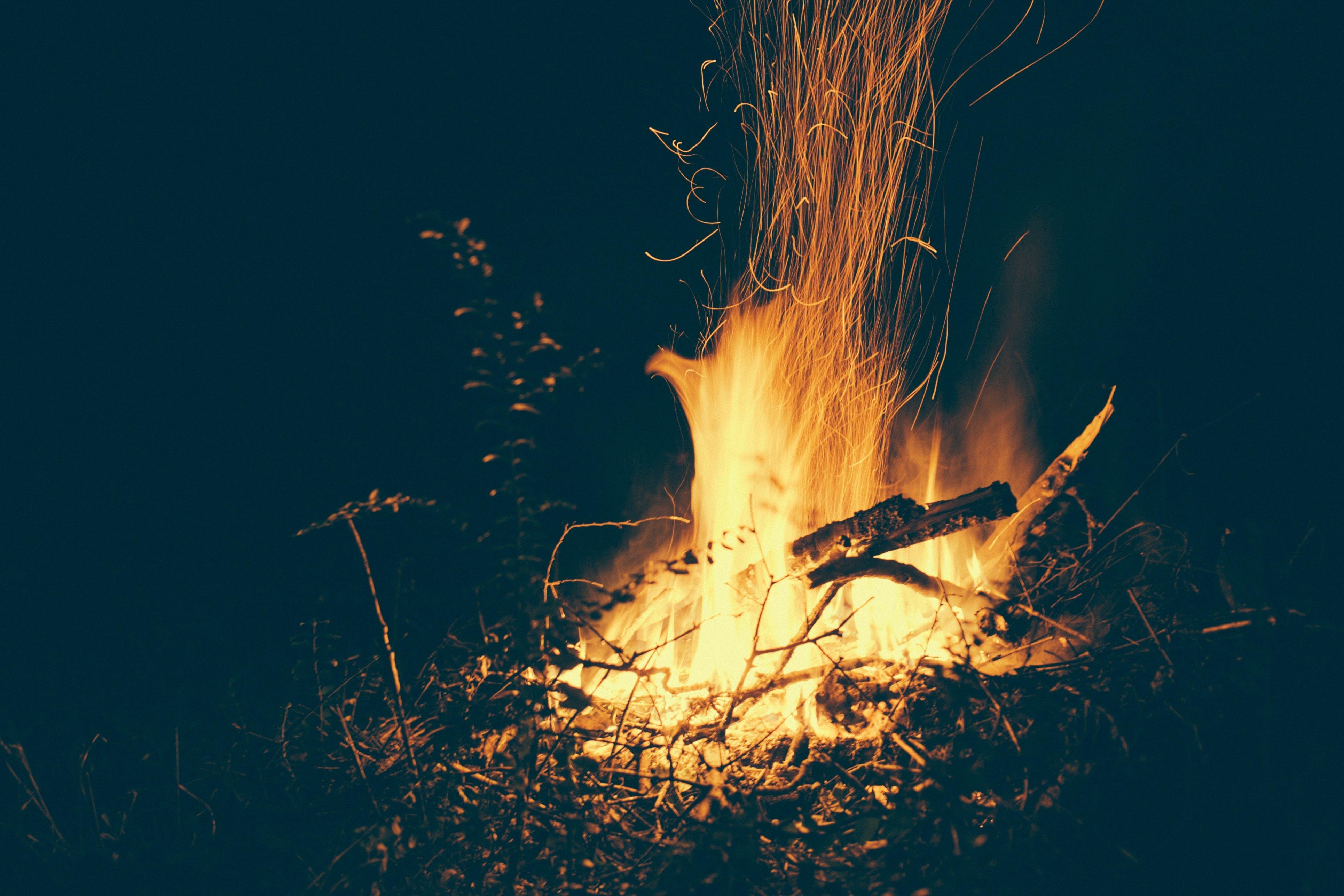 blaze, bonfire, burn
