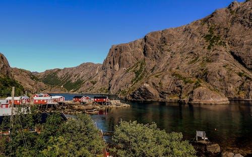 Foto profissional grátis de água, ártico, azul, casas