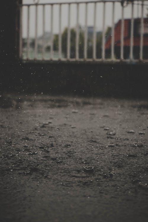 pfütze, regen, regentropfen