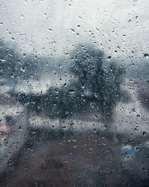 Gratis arkivbilde med forkjølelse, glass, nærbilde, regn