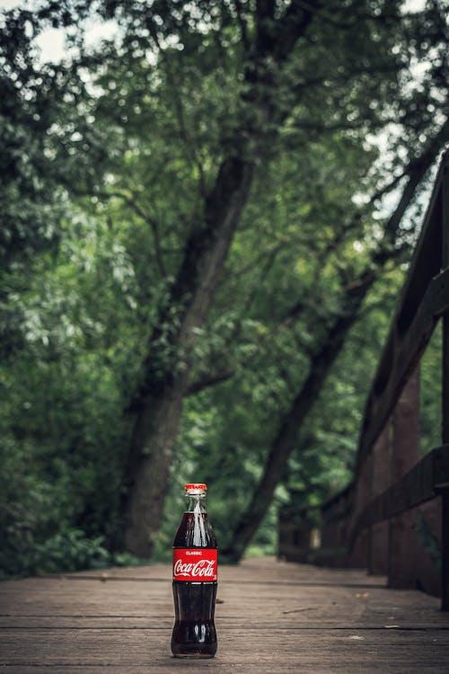 butelka, ciekły, coca-cola