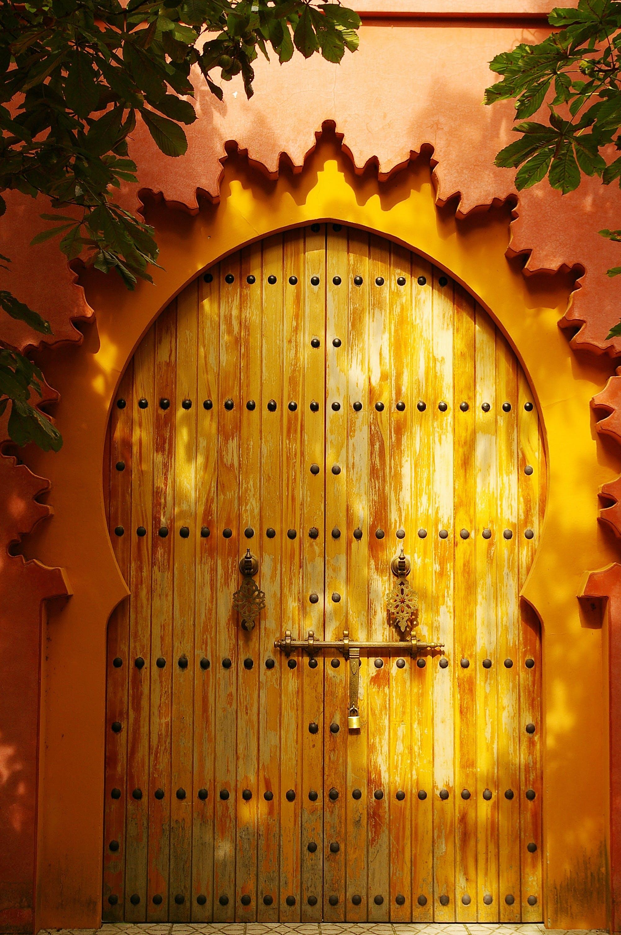 Brown Wooden Door Beside Green Leafed Plant