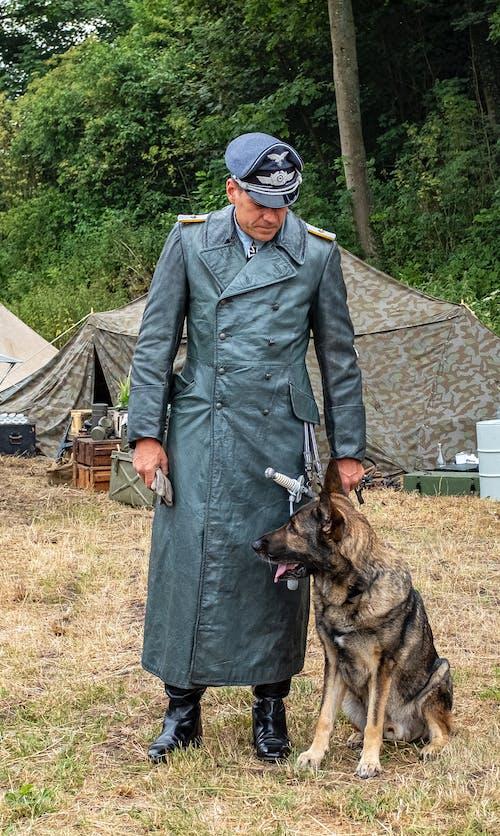 Immagine gratuita di animale, animale domestico, campo militare, cane