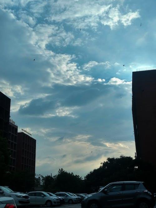 Immagine gratuita di auto, azzurro, cielo azzurro, edifici