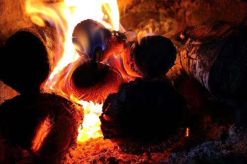 Fotobanka sbezplatnými fotkami na tému atraktívny, detailný záber, dráždivý, drevo na oheň
