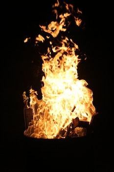 Free stock photo of night, dark, firewood, fire