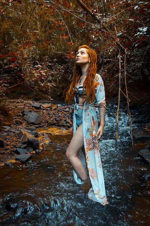 Бесплатное стоковое фото с взгляд вверх, вода, голый, деревья