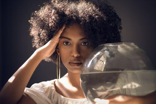Základová fotografie zdarma na téma afro, akvárium, cestování, dospělý