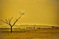climate, landscape, nature