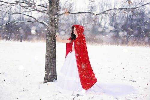 Δωρεάν στοκ φωτογραφιών με γυναίκα, δάσος, δέντρα, δέντρο