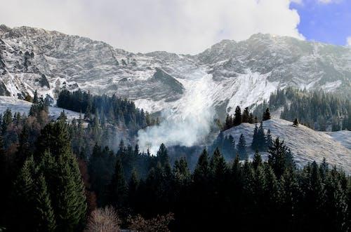 Foto profissional grátis de árvores, cênico, floresta, montanha