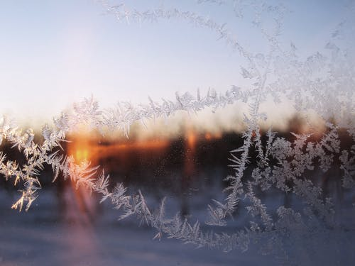 Photos gratuites de aube, brouillard, froid, gel