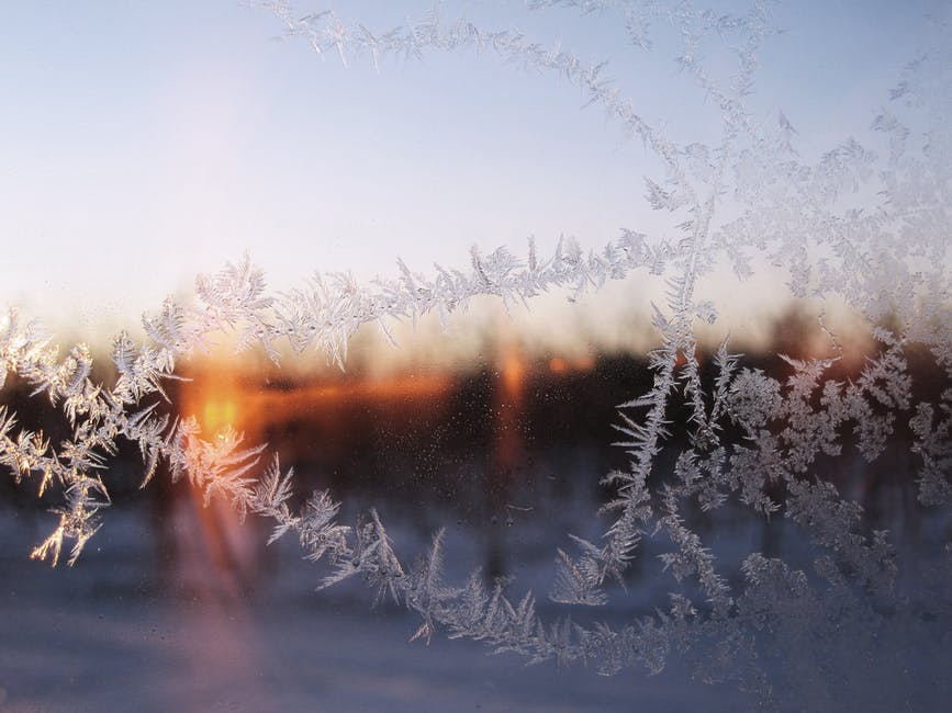 New free stock photo of cold, snow, dawn