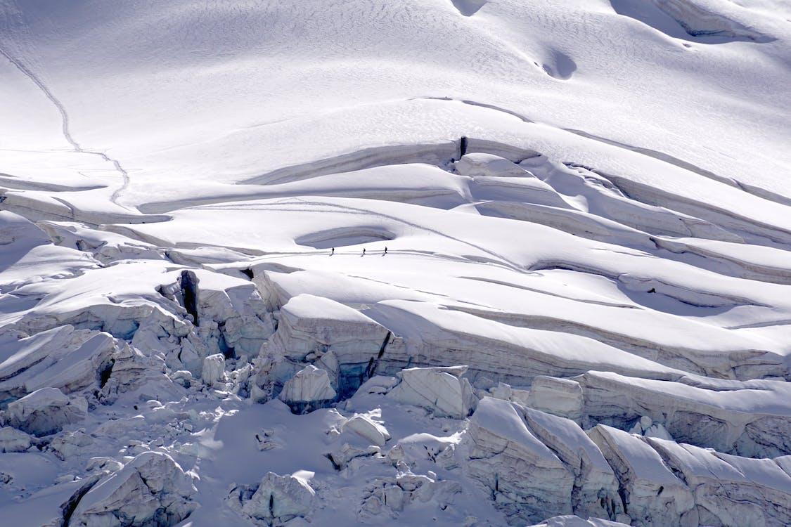alb, alb ca zăpada, alpin