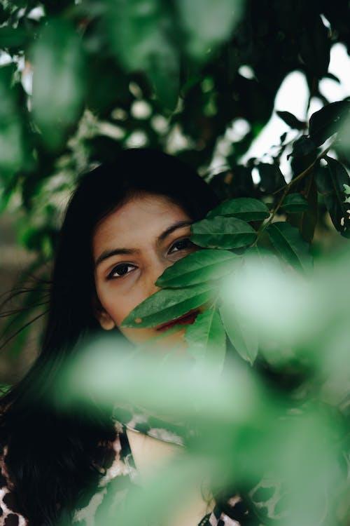35 mm, 50m, doğa, Doğa Ana içeren Ücretsiz stok fotoğraf