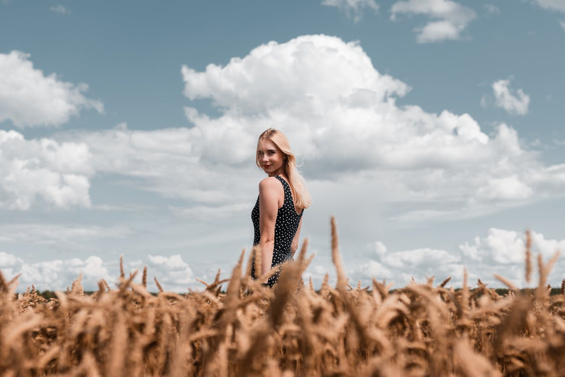 agricoltura, azienda agricola, bellissimo
