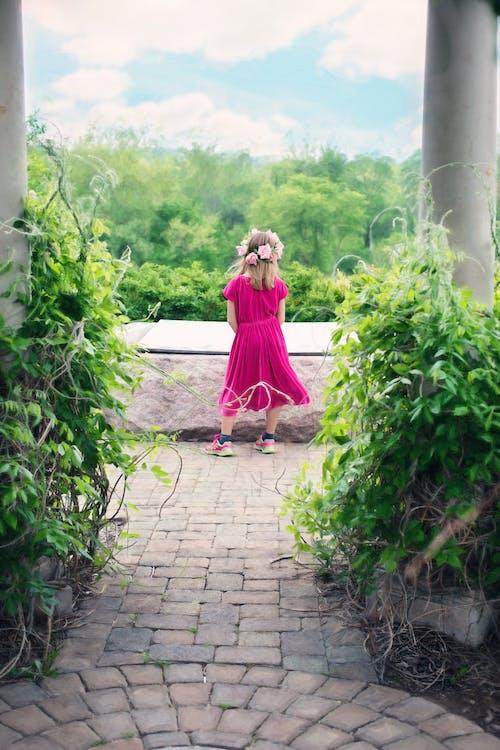 경치, 공원, 귀여운