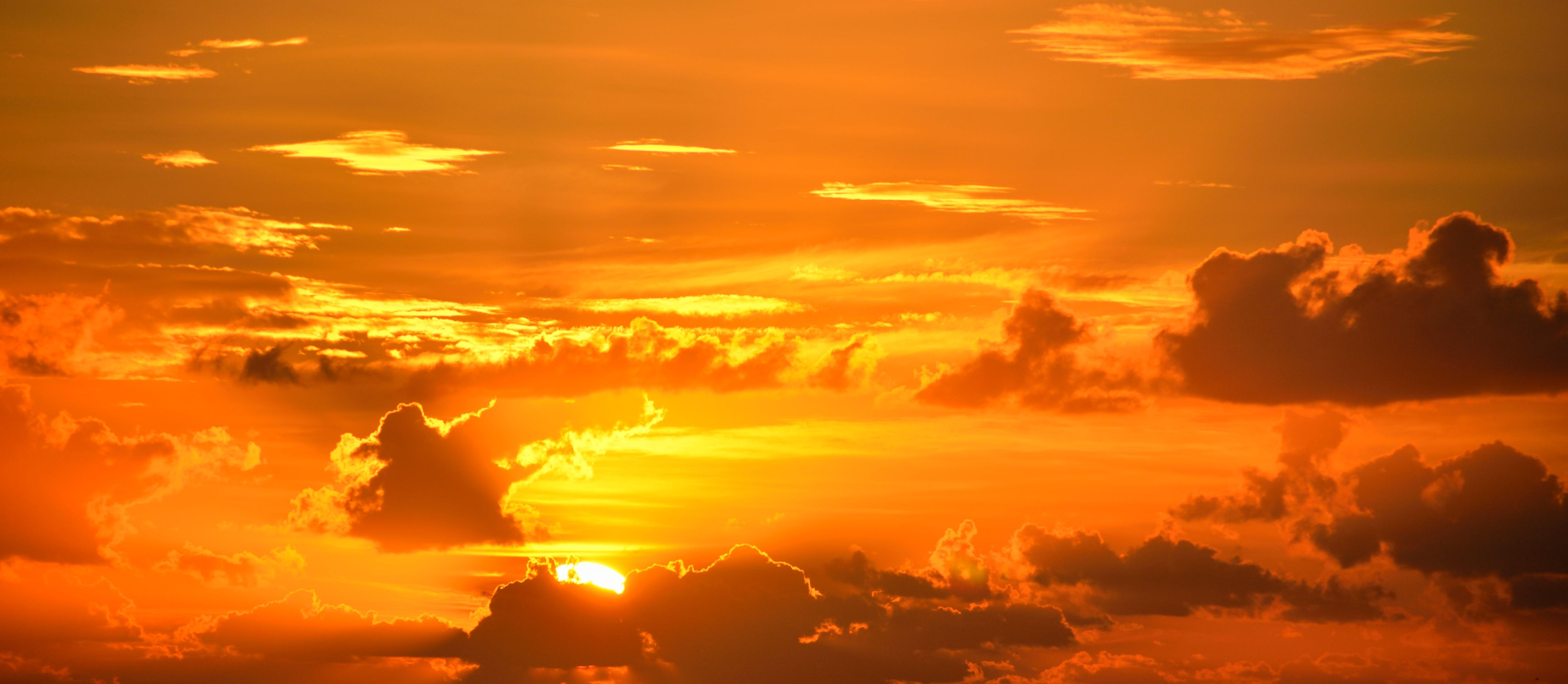 backlit, beauty, breathtaking