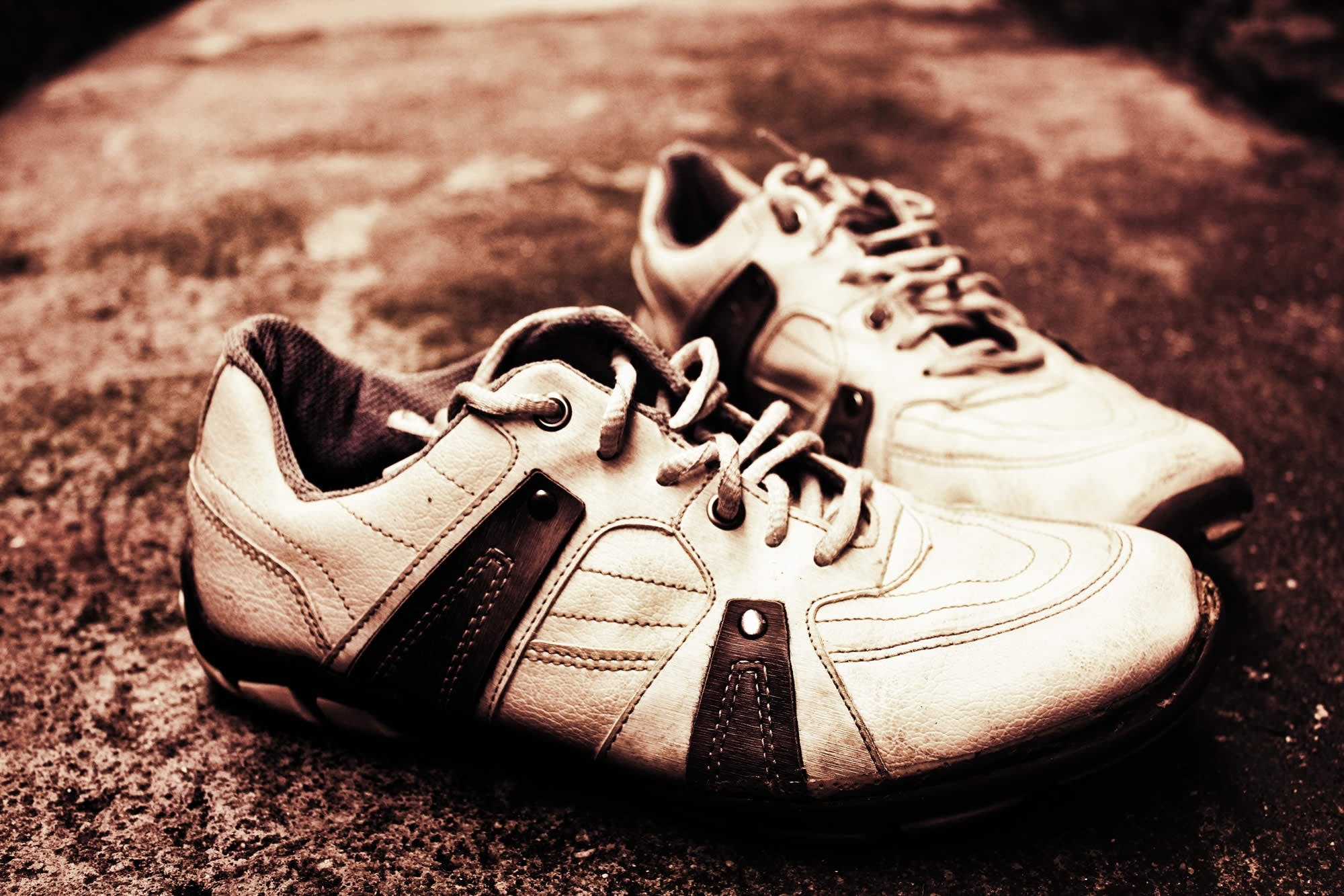 Free stock photo of footwear, shoelace, shoes, tennis
