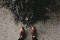 feet, bush, shoes