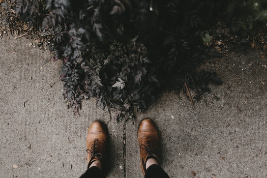 Free stock photo of feet, bush, shoes, ground
