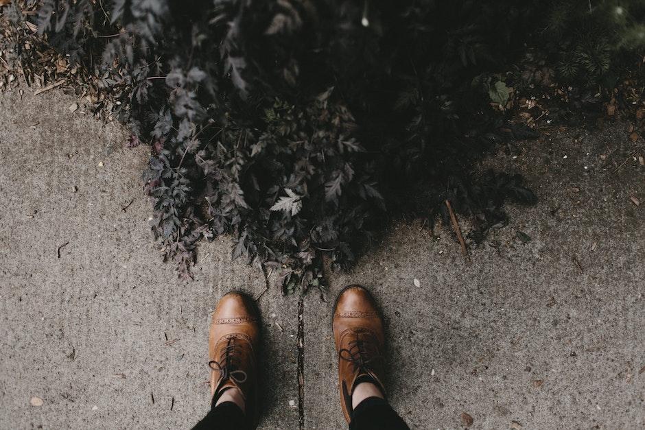 bush, concrete, feet