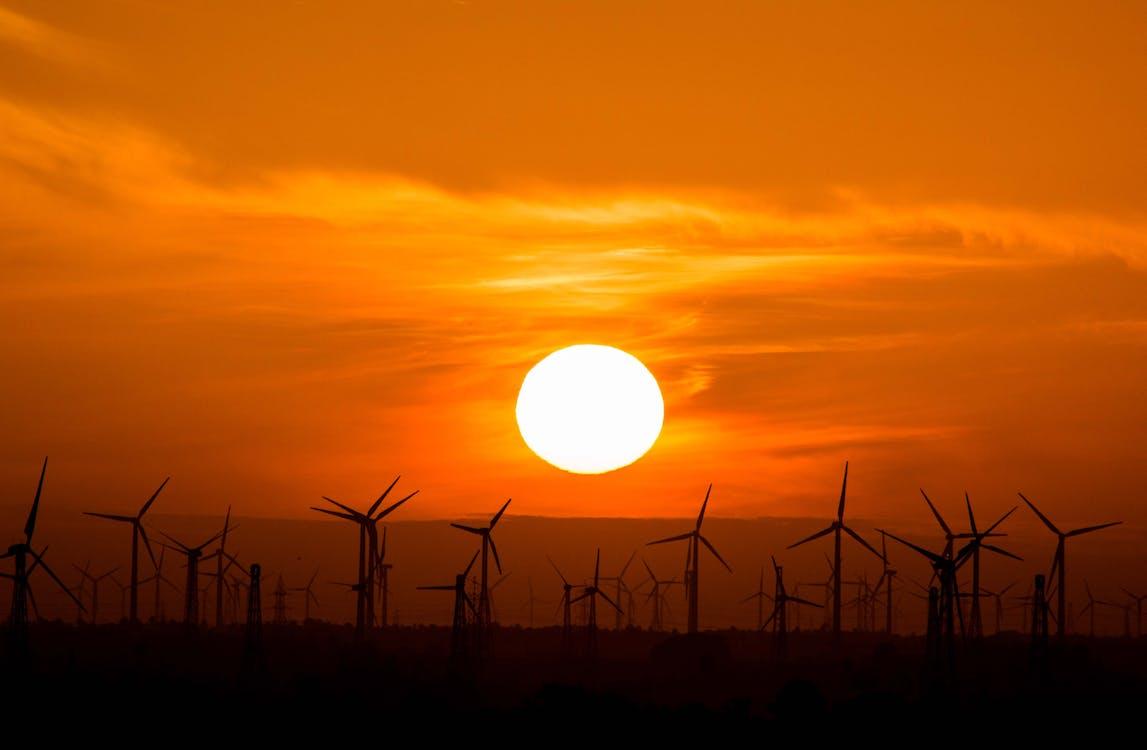 Wind Turbines during Golden Hour