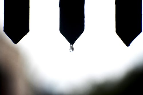 Close-Up Photo of Droplet