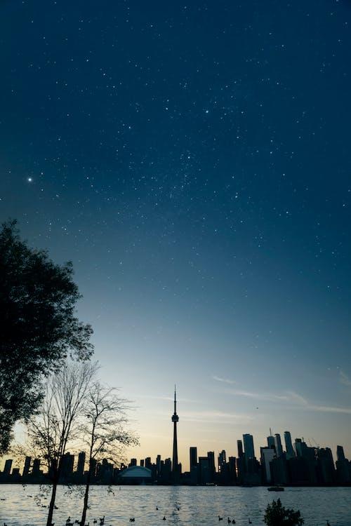 Immagine gratuita di acqua, alba, albero, cielo