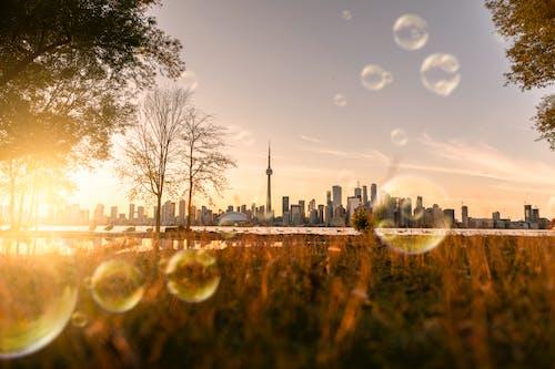 Ilmainen kuvapankkikuva tunnisteilla kaupunkinäkymä, kuplat, saippuakupla, saippuakuplat
