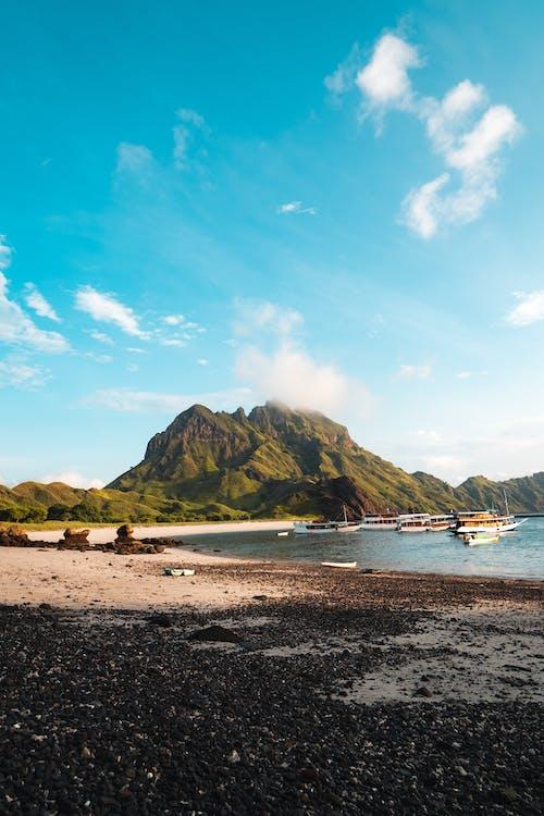 Fotobanka sbezplatnými fotkami na tému breh, cestovať, člny, denné svetlo