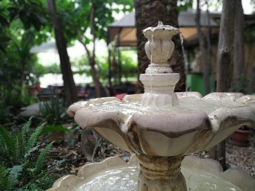 Free stock photo of calm, dasein, fountain, nature
