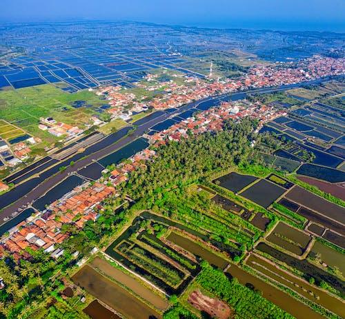 Foto profissional grátis de aerofotografia, agricultura, área, área residencial