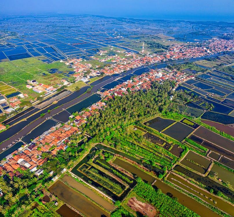 agricultura, arboles, Barrio residencial