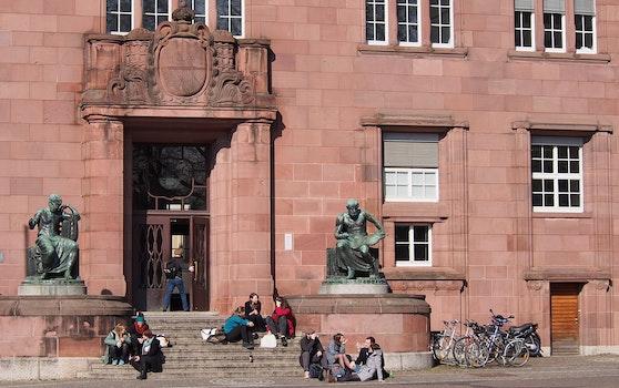 Free stock photo of stairs, students, study, university