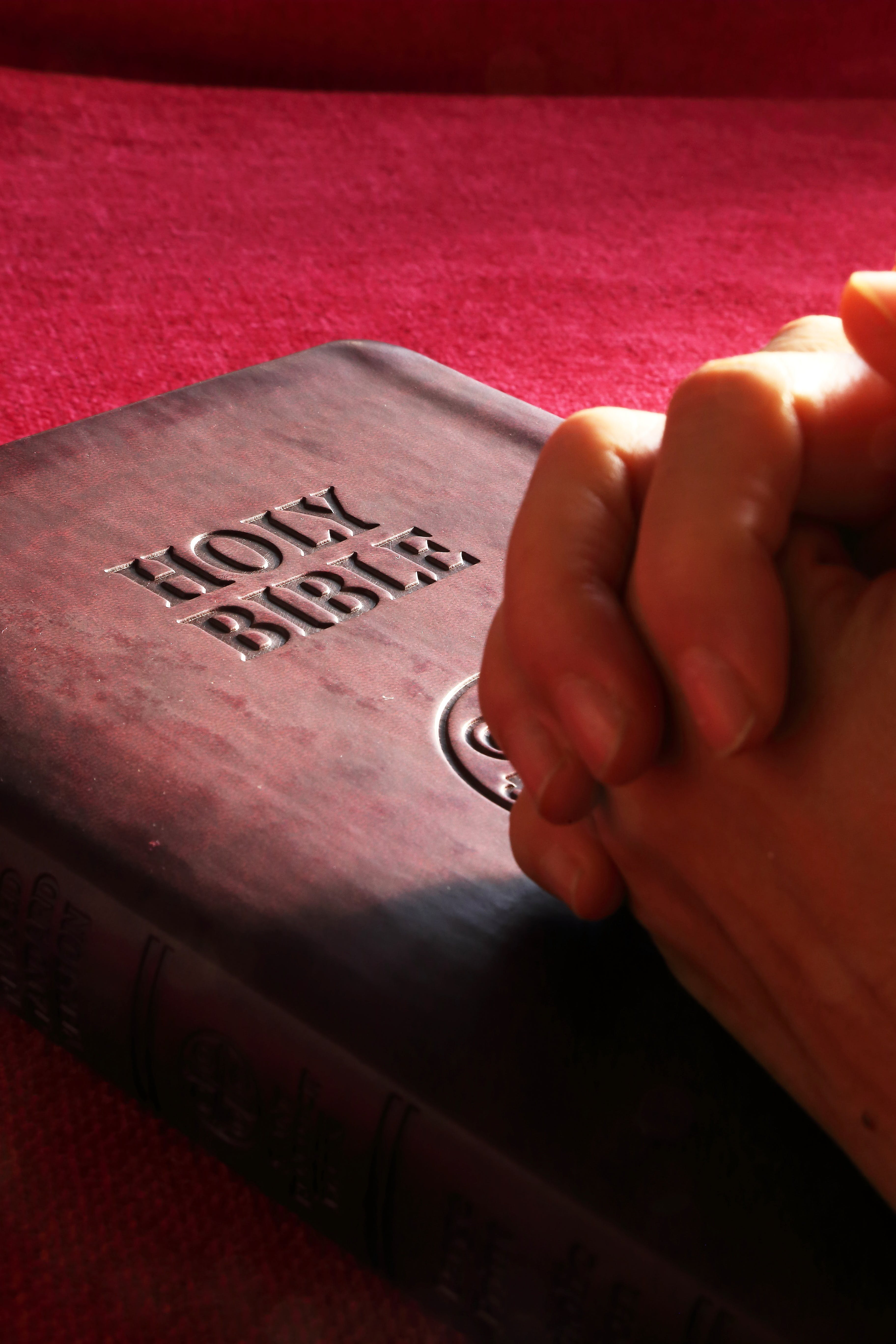 Person Hands on Holy Bible