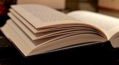 books, leaves, book