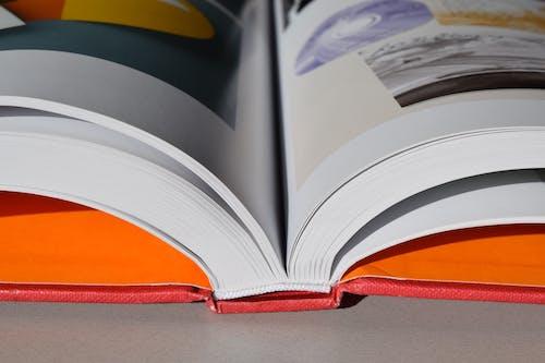 圖書館, 大學, 學校, 學習 的 免費圖庫相片