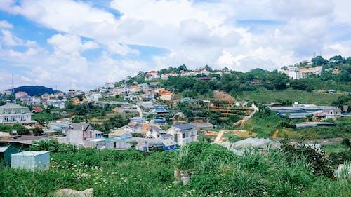 Gratis stockfoto met berg, blauwe lucht, dalat, heuvel