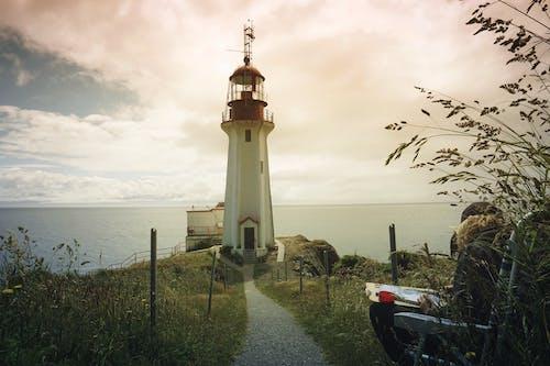 Darmowe zdjęcie z galerii z kanada, latarnia morska, malarz, morze