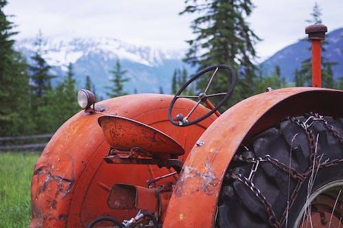 Darmowe zdjęcie z galerii z ciągnik, czerwony, gospodarstwo, kierownica
