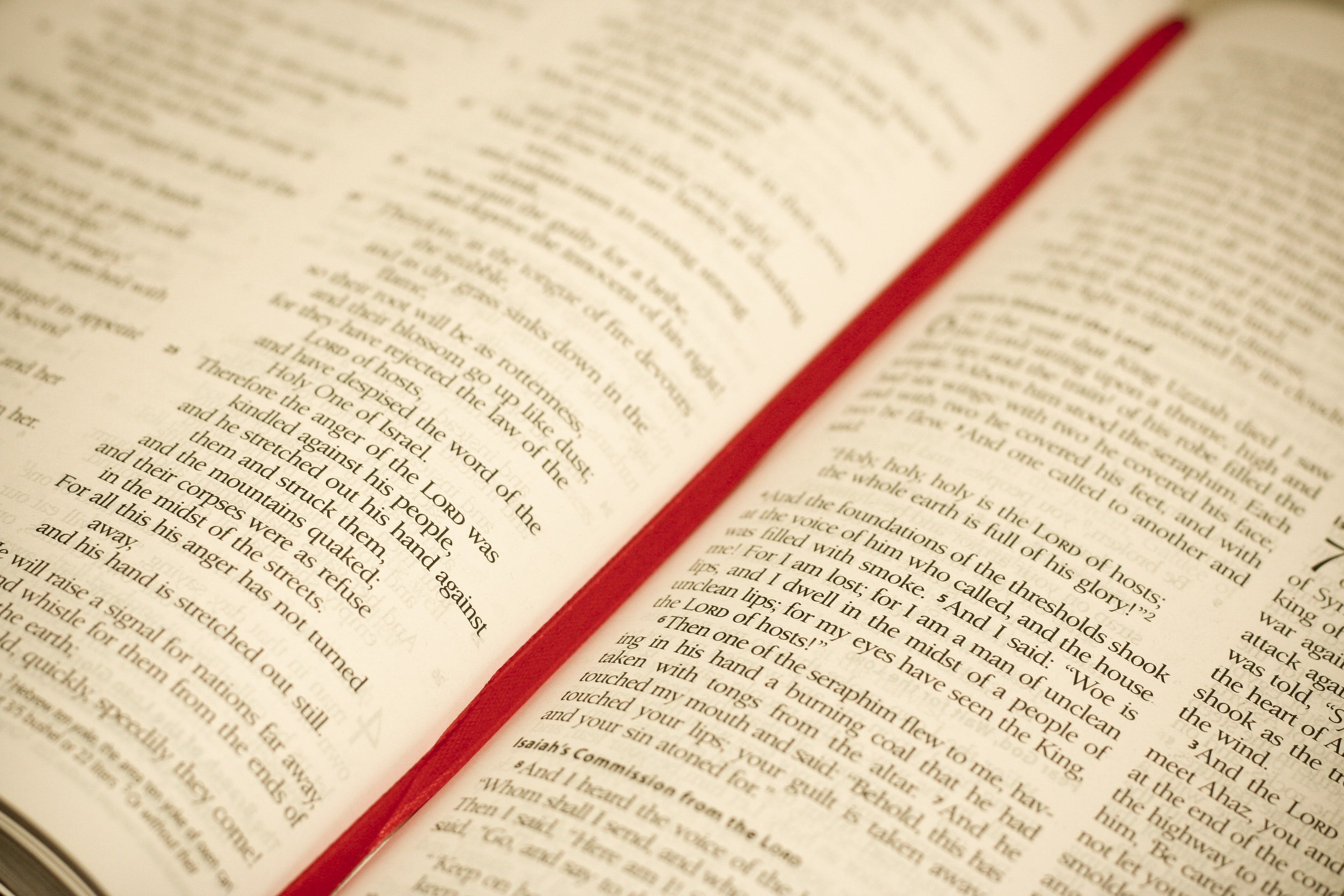 Free stock photo of blur, religion, book, catholic