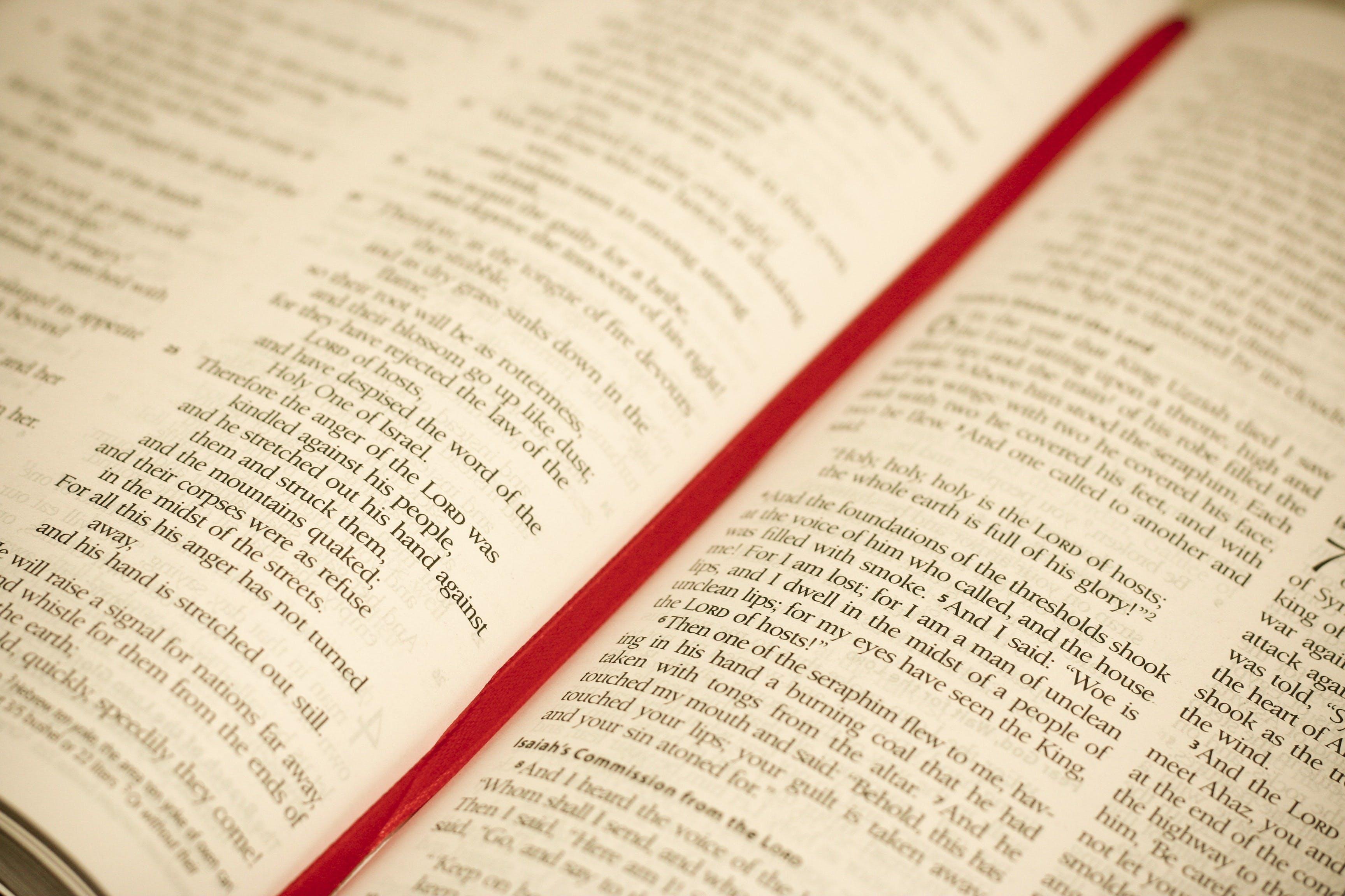 bibel, christentum, christian