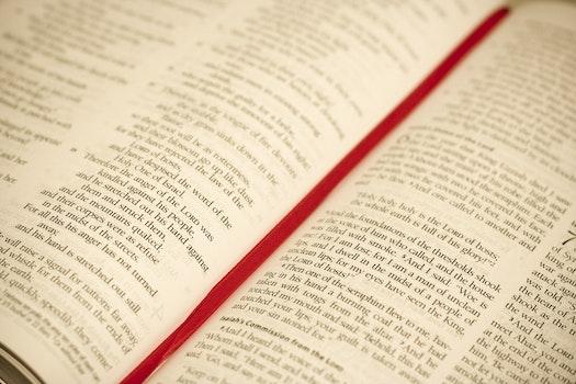 Free stock photo of blur, religion, book, catholic