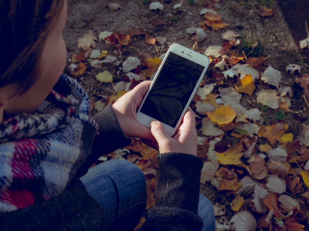 Woman Holding Iphone Near Withered Leaf